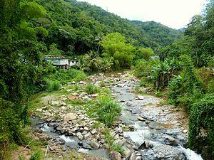 Pellejas River - Image: Rio Pellejas Utuado Puerto Rico