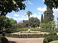 Rione X Campitelli, 00186 Roma, Italy - panoramio - Laci30 (44).jpg