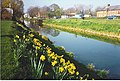 River Welland, Spalding. - geograph.org.uk - 111332.jpg