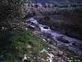 Rivera rio alcazar - panoramio.jpg