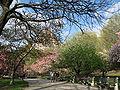Riverside Park 01.jpg