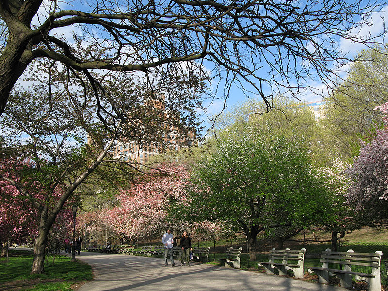 Riverside Park - Page 5 800px-Riverside_Park_01