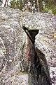 Rock in Laukaa.jpg