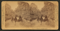 Room for one more, Williams Canyon, Colorado, U.S.A, from Robert N. Dennis collection of stereoscopic views.png