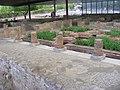 Ruínas Romanas de Conímbriga 9.jpg