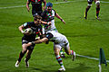 ST vs Harlequins - Match-17.jpg