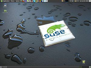 SUSE 11.3, screenshot.jpg
