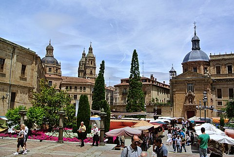 Salamanca day trip worth it?