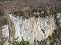 Salt de Sallent des del mirador (març 2011) - panoramio.jpg