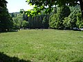 San Romolo (Sanremo) - The grass.jpg