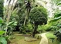 Sankyo Garden - DSC01286.JPG