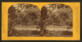 Scene on the Des Plaines River, by P. B. Greene 3.png