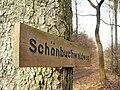 Schönau - Sitzbuche - Schönbuchwaldweg 2013-03-10 15-28-02.jpg