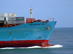Sealand New York p14 approaching Port of Rotterdam, Holland 08-Jul-2007.jpg