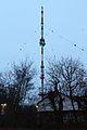Sender Venusberg01032017 2.JPG