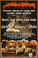 Sheep club2.jpg