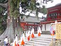 Shinto Dance in Kasuga Shrine - panoramio.jpg