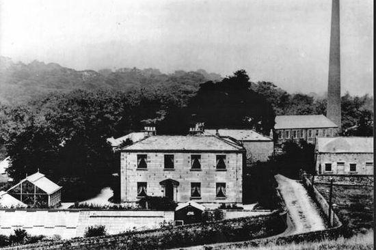 Shotley Grove