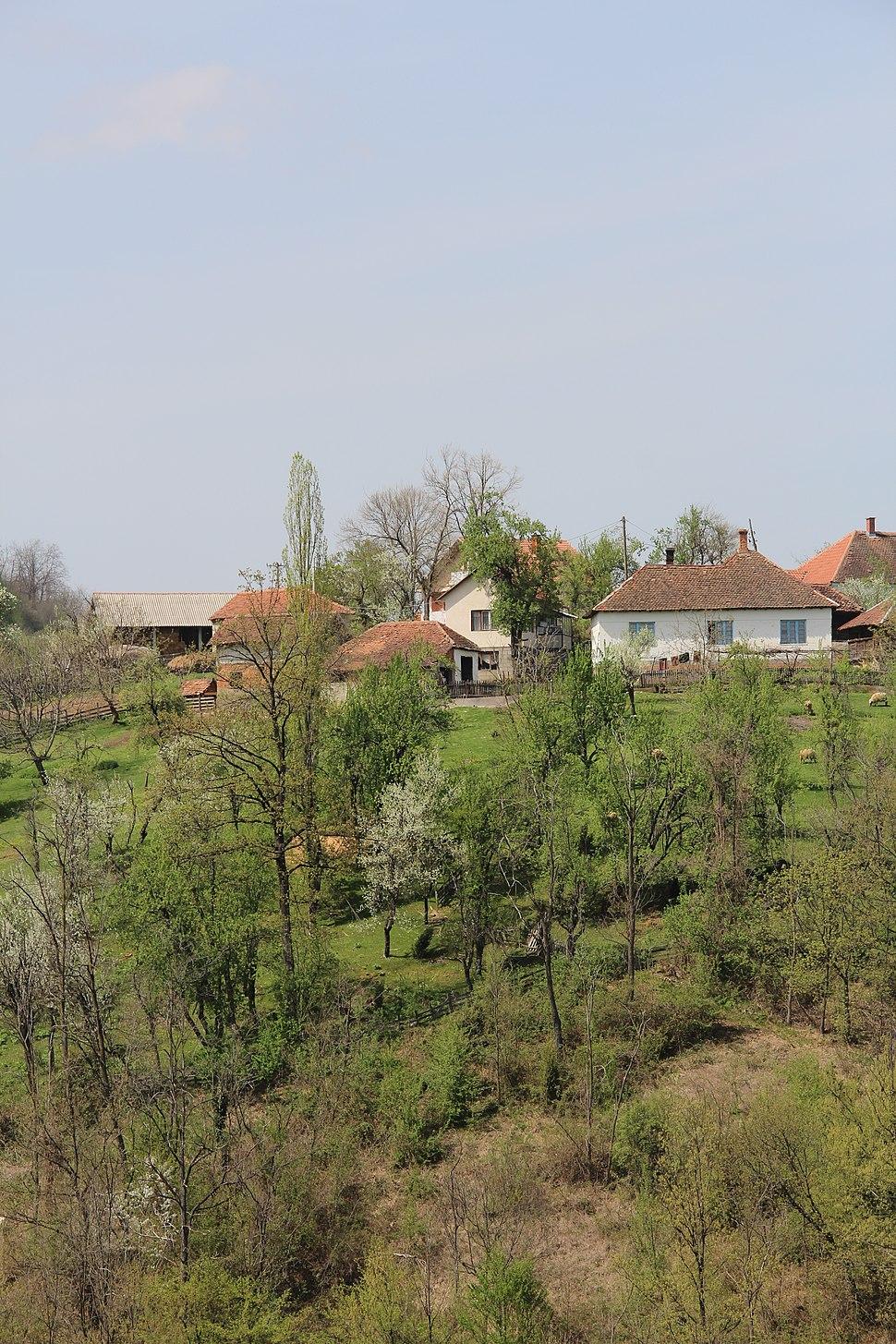 Sitarice - opština Valjevo - zapadna Srbija - panorama 2
