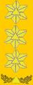 Sivilforsvaret-Distinksjon-Sjef sivilforsvaret.png