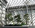 Smithsonian Gardens in October (22747462565).jpg