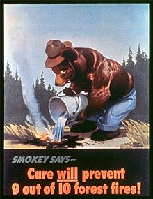1928 : Smoky The Bear Campaign Begins