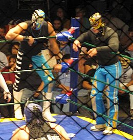 A picture of two masked wrestlers, La Sombra and Volador Jr., watching a wrestling match from the apron.