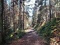 Sommerlicher Herbst Herrenstuhl - panoramio (30).jpg
