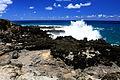 Southern Coast - Easter Island (5956400758).jpg