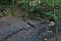 Soutok Jedovnického potoka a bezejmenného toku těsně před propadáním, národní přírodní rezervace Rudické propadání, okres Blansko.jpg