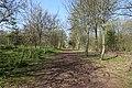 Spring @ Bois de Boulogne @ Paris (33648401725).jpg
