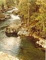 St. Joe National Forest 99-7644 (5881446798).jpg