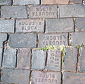 St. Pete Round Lake bricks01.jpg