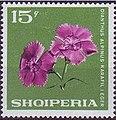 Stamp of Albania - 1968 - Colnect 347597 - Alpine Pink Dianthus alpinus.jpeg