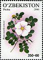 Stamps of Uzbekistan, 2006-112.jpg
