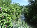 Standen stream - geograph.org.uk - 842327.jpg