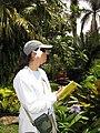 Starr-130312-2380-Gardenia augusta-flower and Kim-Pali o Waipio Huelo-Maui (25088972802).jpg