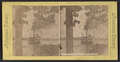 Steamer on Chautauqua Lake, from Robert N. Dennis collection of stereoscopic views.png