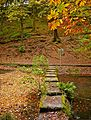 Stepping stones at Chellow Dean (2955112621).jpg