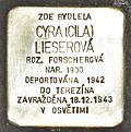 Stolperstein für Cyra Liserova.JPG