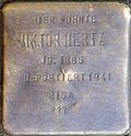 Stumbling block for Helmuth Hertz (Georgstraße 14)