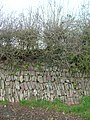 Stone Faced Hedge Beaford.JPG