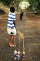Street cricket.jpg