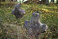 Strupaļu Egļu kapsēta - cemetery - panoramio.jpg