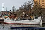 Svanevik Mars 2014 02.jpg