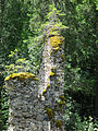 Svartnäs Nybruket ruin efter spiksmedja 3527.jpg