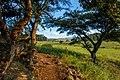 Swaziland (33278257300).jpg