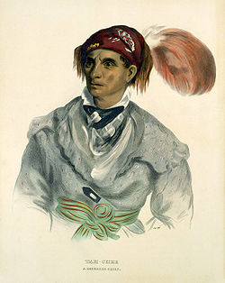 Tah-Chee (Dutch), A Cherokee Chief, 1837, Smithsonian American Art Museum