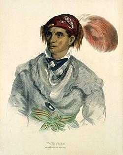 Tah-Chee (Dutch), A Cherokee Chief, 1837, Smithsonian American Art Museum