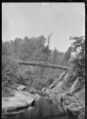 Tangarakau River, with horses and carriage crossing a suspension bridge. ATLIB 286522.png